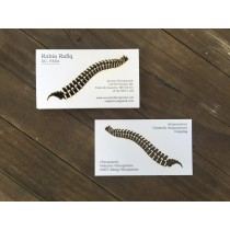 100 Card Stock Business Cards